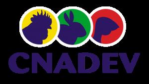 Logo-cnadev-client-idcomservices